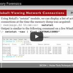 WEBCAST: Windows Memory Forensics