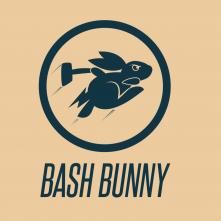 bashbunny_3